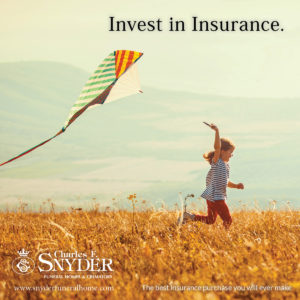 The best insurance purchase you will ever make